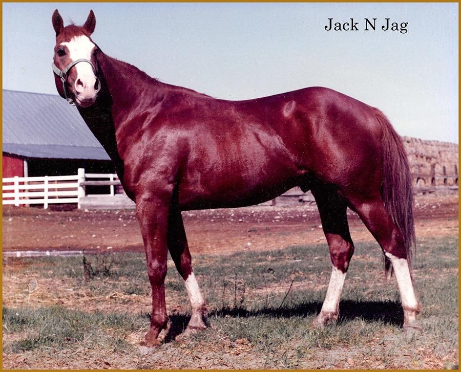JACK-N-JAG