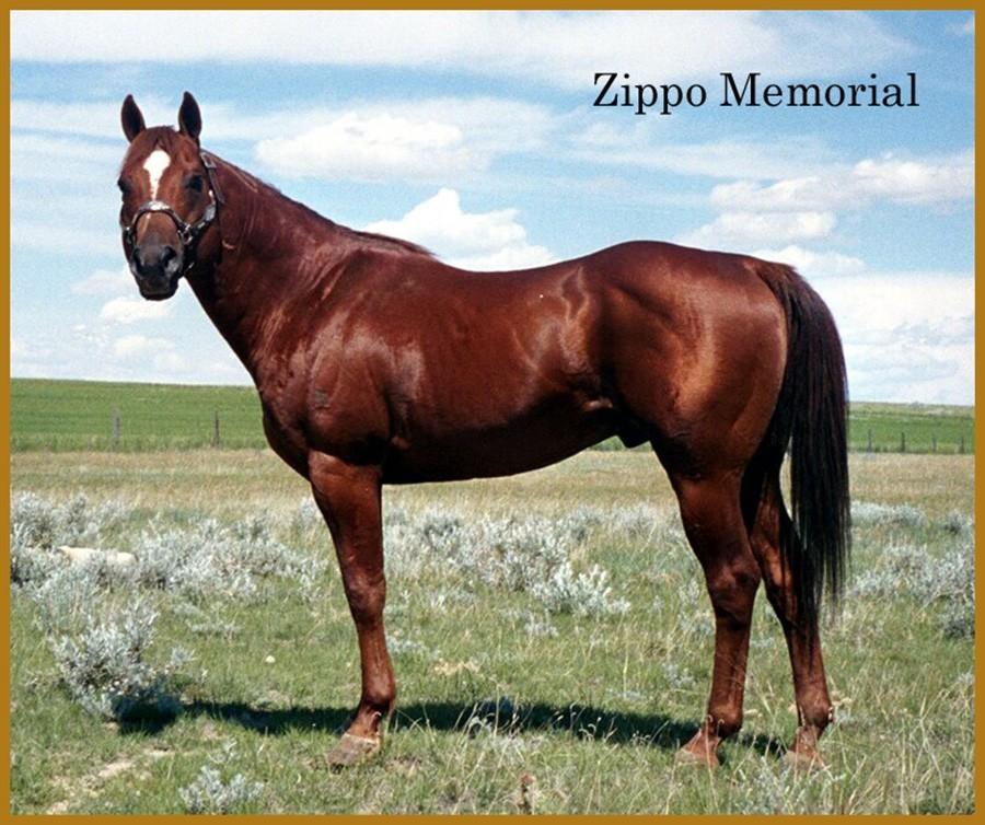 ZIPPO-MEMORIAL